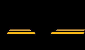 MDF Corporate Logo BlackYellow